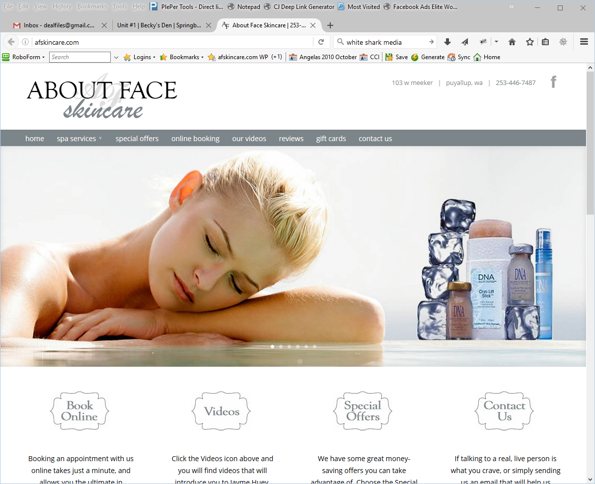 About Face Skincare Website